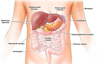 Желудочно-кишечные болезни