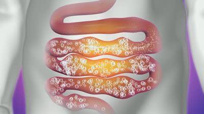 Каким бывает дискомфорт в желудочно-кишечном тракте?