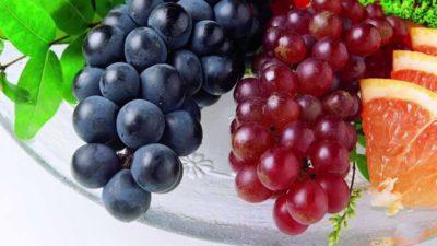 Можно ли есть виноград? фото