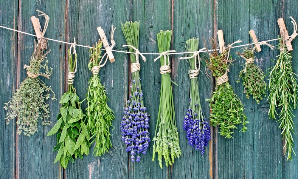 Натуральные травы и другие природные вещества оказывают положительное влияние не только на пищеварительный тракт, но и на общее самочувствие человека