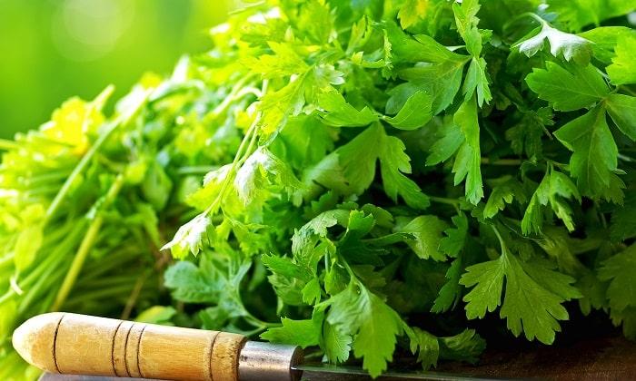 Из ингредиентов в молочном супе с овощами присутствует пучок зелени петрушки