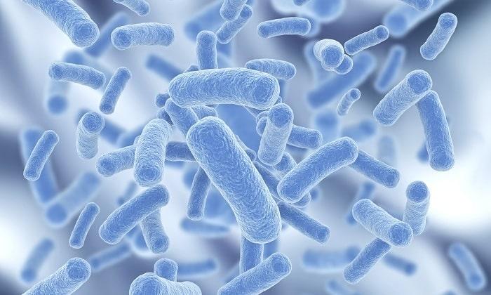 Кроме этого, ромашка помогает бороться с вредоносными бактериями