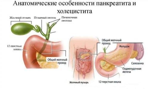 Возникновение воспалительного процесса в поджелудочной железе и желчном пузыре часто бывает одновременным