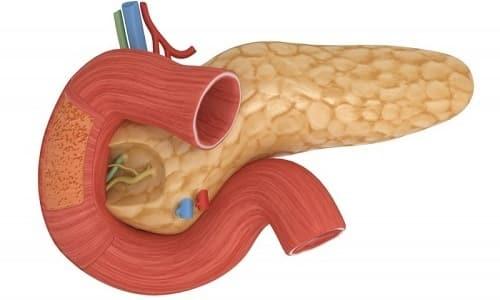 При обострении воспалительного процесса железа отекает и не в состоянии вырабатывать ферменты