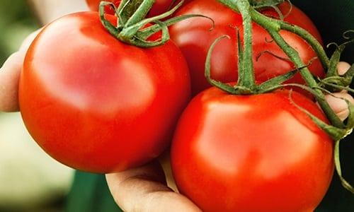 В период ремиссии можно добавить небольшое количество очищенных помидоров