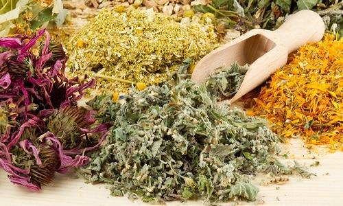 При воспалительных заболеваниях поджелудочной железы и желчного пузыря применяют травы со спазмолитическим действием