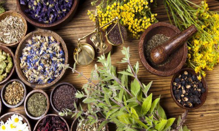 Терапия дивертикулеза народными средствами заключается в приеме отваров на основе целебных трав