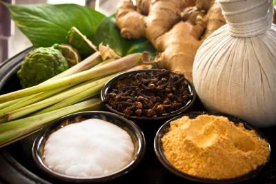 Лечение народными средствами при описторхозе предполагает использование лекарственных растений
