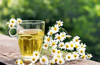 Цветы ромашки можно использовать для настоев от воспаления кишечника