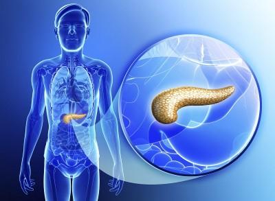 Неправильное питание способно спровоцировать обострение панкреатита. Диета станет основным мероприятияем, направленным на снижение симптомов