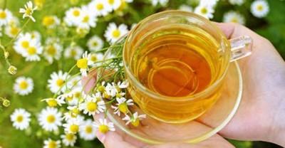 Можно приготовить для грудничков чай из бессмертника и ромашки