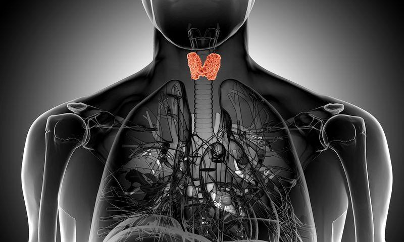 Гипотиреоз можно диагностировать данным анализом