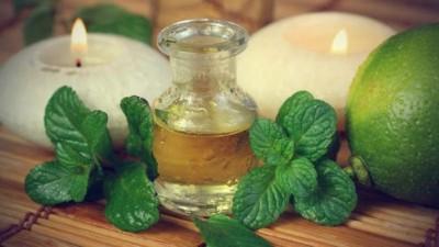 Эффективным средством является обычная перечная мята, готовящаяся в виде полезного травяного чая