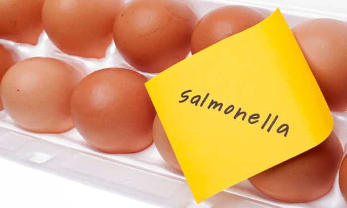 Основными этиологическими факторами энтероколита являются сальмонеллез