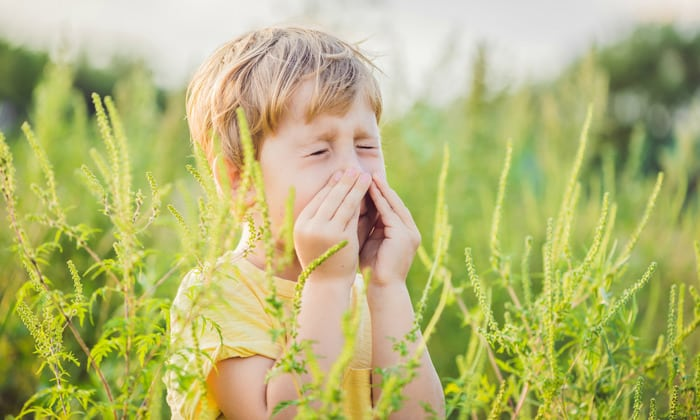 Одной из причин болей может стать некоторые типы аллергии