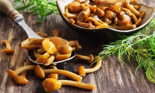 Отравление грибами может быть зафиксировано даже в том случае, если человек соблюдал все необходимые правила приготовления данных продуктов