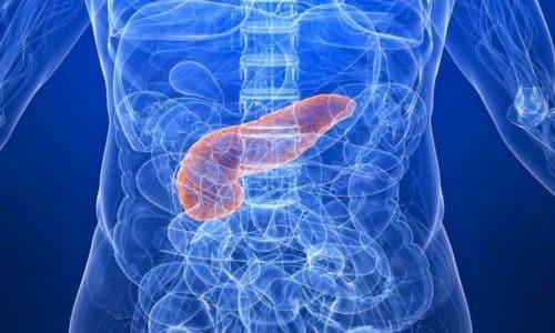 Поджелудочная железа - это очень важный орган в человеческом организме, который принимает активное участие в процессе пищеварения