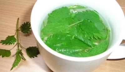 Эрозивный проктит может лечиться отваром из крапивы: 1 ложку травы следует заваривать в 1 стакане кипятка до полного остывания