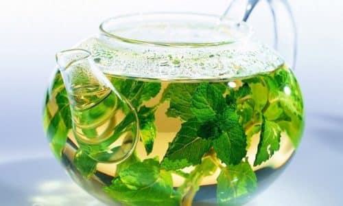 Снизить уровень соляной кислоты поможет мята, она должна стать временной заменой чаю