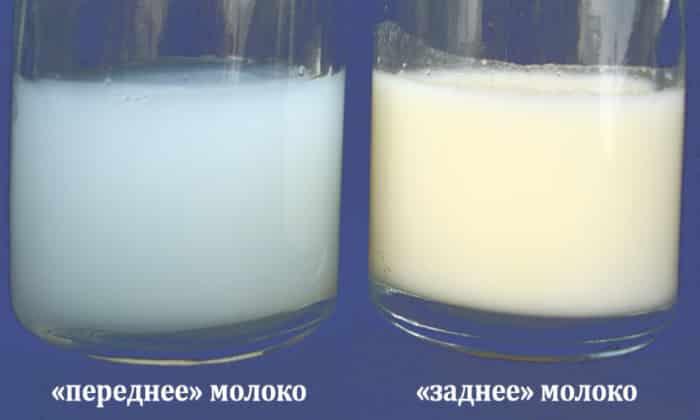 Все зависит от того, какое молоко («заднее» или «переднее») употребляет малыш