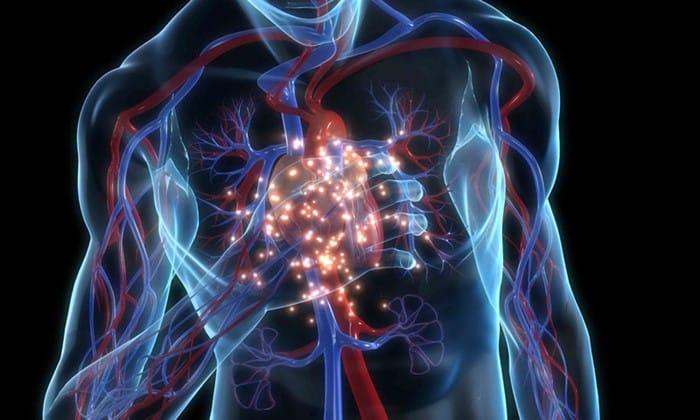 Болезни сердца могут быть вызваны повышенной кислотностью желудка