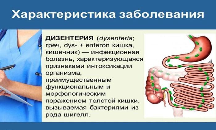 Дизентерия - поражает обычно толстый кишечник, основным проявлением считается стул с примесью крови