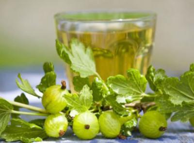 Можно воспользоваться соком из плодов крыжовника. Нужно выпивать всего по ложке сока трижды в сутки