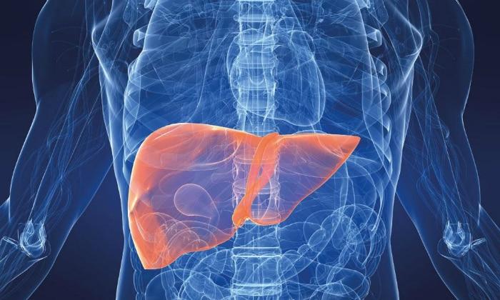 Желудочный кашель может быть признаком поражения печени