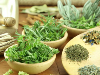 В профилактике геморроидального заболевания растения тоже полезны