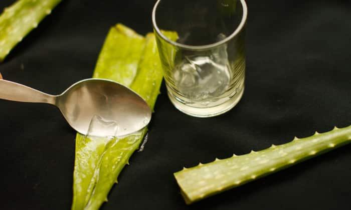 Атонические запоры легко вылечить с помощью сока алоэ. 3 раза в сутки в течение 30 дней перед едой пить по 1 ч. л. свежего сока