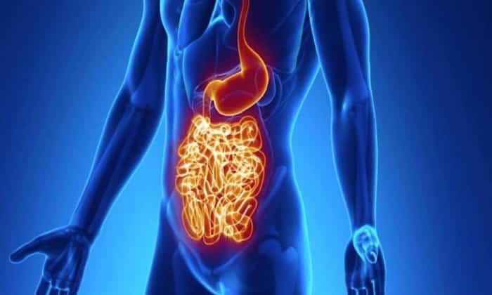 Если появились проблемы с кишечником, симптомы, лечение и диагностика зависят от типа патологии