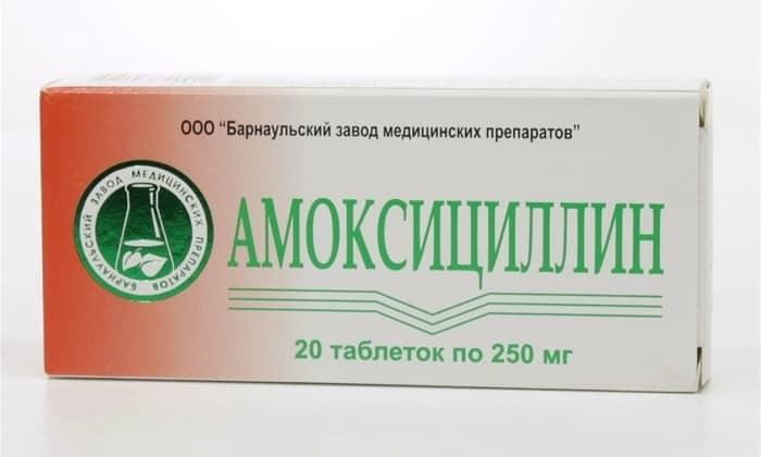 При панкреатите назначаются Амоксициллин
