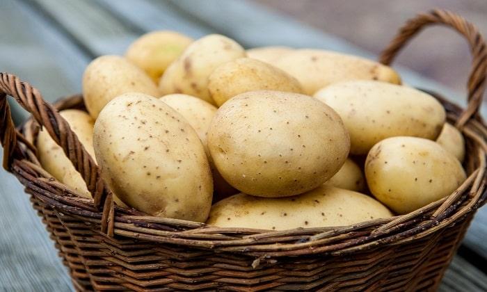 Сок свежего картофеля может остановить геморроидальное кровотечение