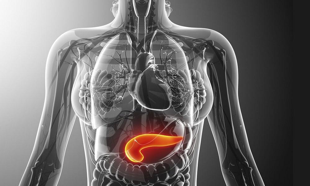Нехватка глюкагона свидетельствует о развитии панкреатита