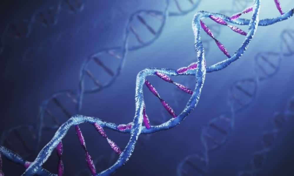 Риск возникновения заболевания повышается, если оно имелось у ближайших родственников пациента
