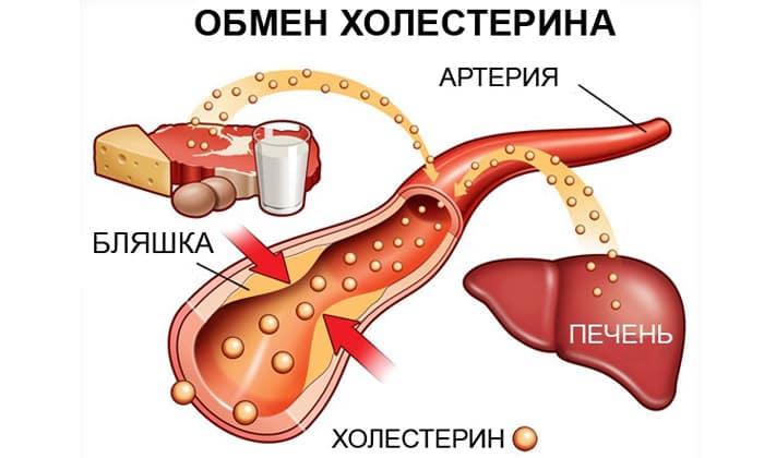 Холлестирин начнет исчезать в сосудах при употреблении кабачков