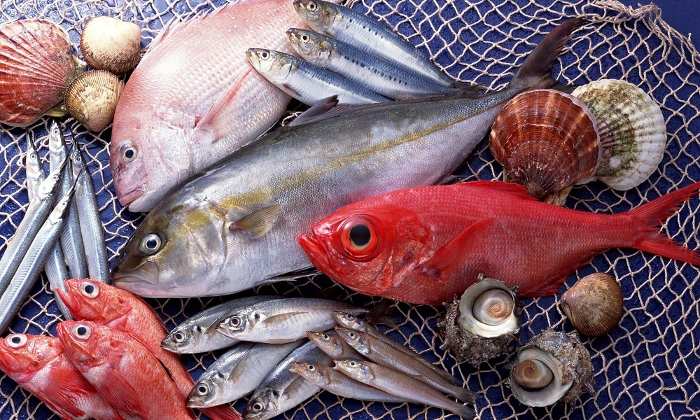 Для профилактики рака поджелудочной железы необходимо включить в рацион рыбные продукты