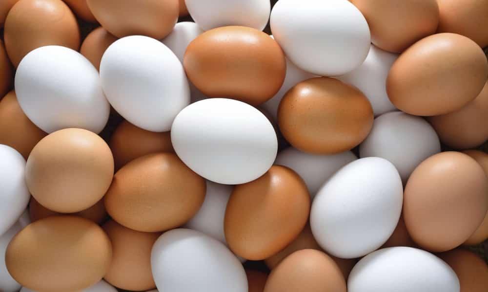 При панкреатите и проявлении его симптомов в рационе должны быть яйца