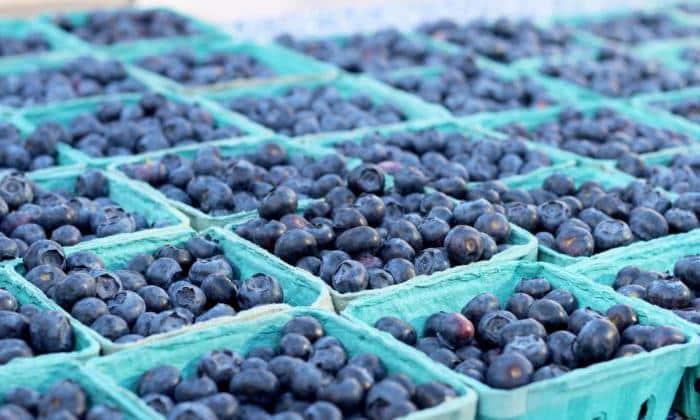 Так же разрешены и некоторые виды ягод, например, черника
