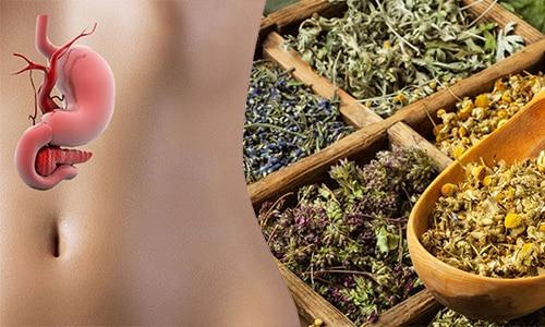 Целебные растения оказывают сильное лечебное воздействие на пораженный орган и помогают достичь восстановления его функций