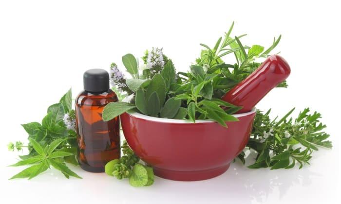 Травы при панкреатите и холецистите: фитотерапия