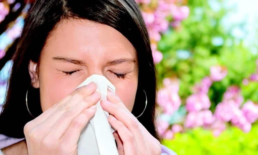Если есть индивидуальная аллергическая реакция на само растение расторопша или добавки в препарате, то применять его для лечения нельзя