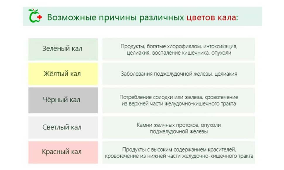 Кал при панкреатите: стул и цвет кала