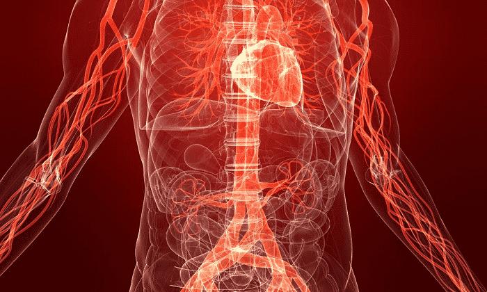 физические нагрузки при панкреатите и холецистите
