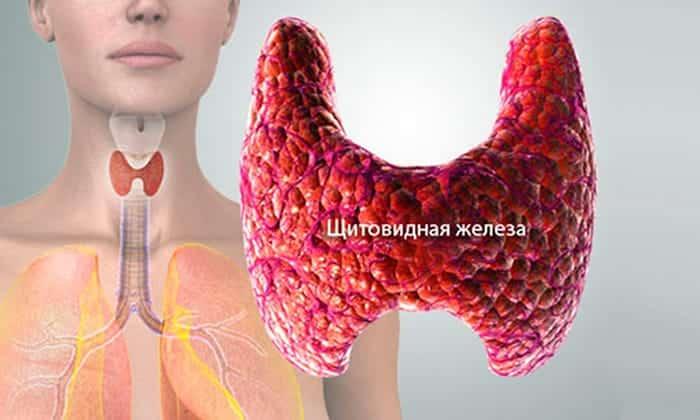 Эндокринные патологии, являются противопоказанием к приему препарата