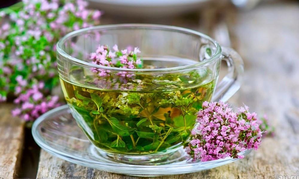 Чабрец используется в качестве восстанавливающего средства, оно выводит накопившиеся токсины и ускоряет метаболизм