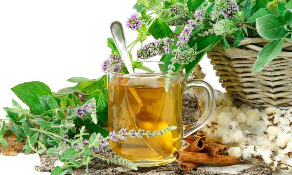 Основа народных методов лечения онкологии - травы, отвары и настойки