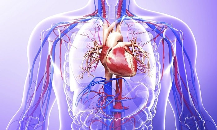 Реополиглюкин запрещен к применению при сердечной недостаточности