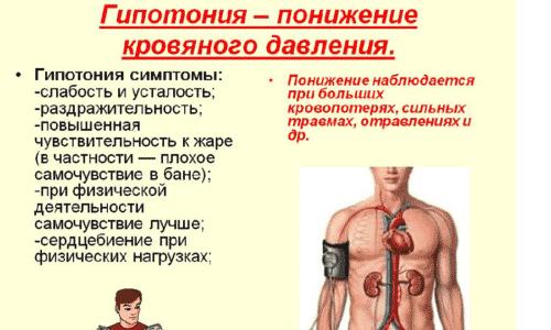 Среди возможных побочных реакций выделяют падение артериального давления
