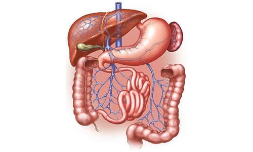 Лекарство показано для лечения болезней ЖКТ с любым уровнем кислотности